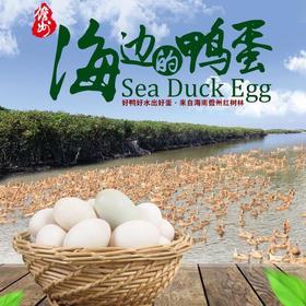 【南海网微商城】来自儋州红树林的海边鸭蛋 20个装
