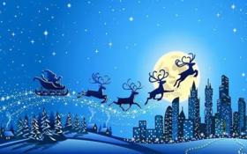 森林童话的圣诞趴