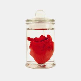吸睛香薰蜡烛|人体实验室系列之心脏(台湾)