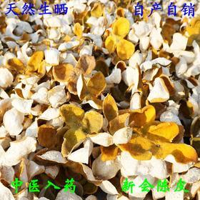 2016年 新会陈皮 正宗 大红皮干柑皮 茶枝柑  新会司前产地 500克