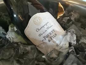 芙妮白中白一级园香槟
