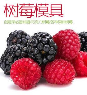 创意树莓模具 树莓模具【独家原创促销中】巧克力树莓 / 糖艺树莓 / 果味树莓 /鱼蓉树莓等等