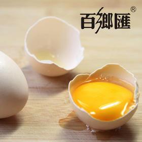 正宗初生蛋宝宝蛋散养初产蛋瑶乡土鸡蛋孕产妇营养鸡蛋 南宁市内50元起配送
