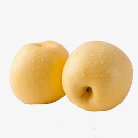 烟台黄金富士 来自北纬37°的冰糖心苹果