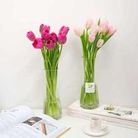 限时秒杀   24.9元/6枝郁金香,多色随机发,用一束花点亮春天