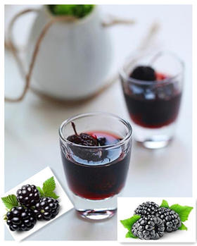 """越喝越健康 酒中极品 滋补养颜 全家适用的""""万能酒""""  桑葚酒 6瓶/箱"""