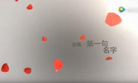 【情人节视频】花瓣图