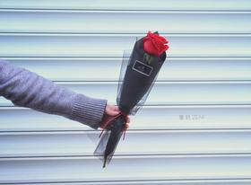 【零玖花坊】情人节定制鲜花 1支装玫瑰(2.14自提)