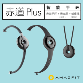AMAZFIT赤道Plus智能手环  赤道手环+极光黑腕带+蜡皮绳配件