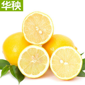 柠檬之都-安岳黄柠檬新鲜水果一级大果柠檬榨汁切片泡茶酸味