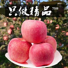 【有赞拼团】山东烟台红富士2500g