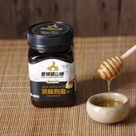 新疆伊犁雪域疆山峰黑蜂熟蜜 纯天然无添加黑蜂熟花蜜450g