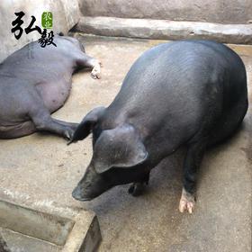 【弘毅生态农场】生态养殖猪肉,默认顺丰,其它快递联系客服 ,自制饲料 无添加剂 无抗生素 非注水 3斤/份