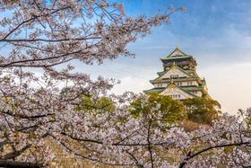 【关西亲子游】大阪六天五晚轻松家庭游 上海出发