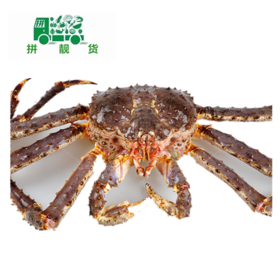 帝王蟹(1斤175元,先收4斤定金700,多退少补)