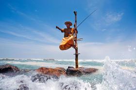 【春季特惠】斯里兰卡7天6晚经典探索之旅