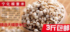 宁化糯薏米3斤装49元包邮~