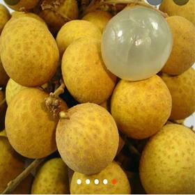 【泰国进口水果】泰 国新鲜龙眼5斤55元起,全国多省包邮