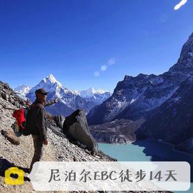高山牦牛:尼泊尔EBC环线徒步13天
