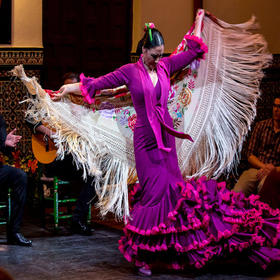 西班牙特色佛拉明戈舞蹈表演