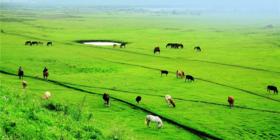 2017呼伦贝尔草原骑马环线--陈巴尔虎草原--20公里野骑--俄罗斯主题风情园--边境满洲里6日活动