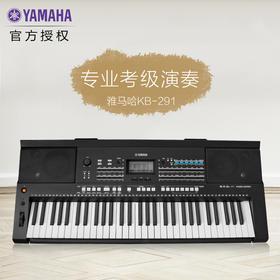 YAMAHA雅马哈电子琴KB-291儿童成人61键考级教学用琴KB-280升级