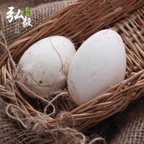 【弘毅生态农场】生态养殖 新鲜鹅蛋(6个装)
