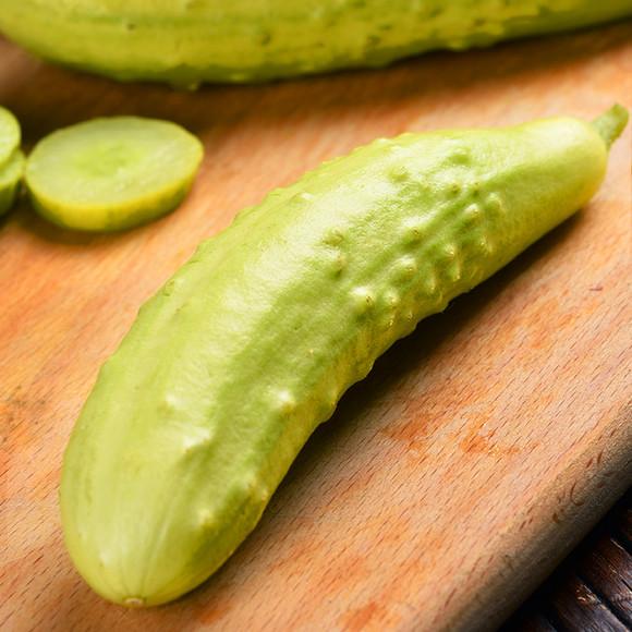「白玉黄瓜」の画像検索結果