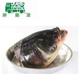 草鱼头(1斤14元,先收定金14,多退少补)