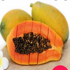 (春节后发货))海南新鲜红心木瓜8斤偏远省份加航空费(EMS全国包邮)