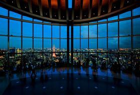 【半日游 · 晚上】浪漫东京夜景