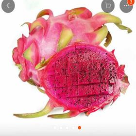 【春节后发货越南进口水果】越南新鲜白心大火龙果、红心中大火龙 果 5斤50元起,多省包邮