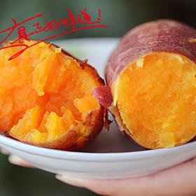 正宗福建漳浦六鳌沙地红薯 自家新鲜红心地瓜 好吃无公害 5斤包邮