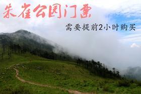 朱雀国家森林公园门票【成人票】