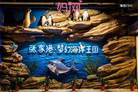 【妈网独立游】之张家港夜宿海洋馆 04/6-04/07 心在梦里,梦在海里!让海洋生物陪你度过一个美妙的夜晚!