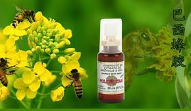 POLENECTAR保莱塔蜂胶蜂蜜喷剂 巴西原装正品 口腔 咽喉