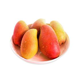 海南精品贵妃芒中果新鲜水果当季芒果