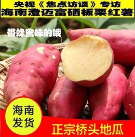 【新一季】海南澄迈桥头富硒地瓜新鲜红薯桥沙金手指板栗薯5、10斤装