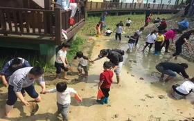 【近郊游】稻花香里欢乐亲子农耕文化节火热开启,春耕赏花抓鱼与大自然更亲近一些吧!