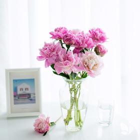 送芍药再送花瓶!月度自然系列混合版,送芍药一捧,经典花瓶「小古典」一只