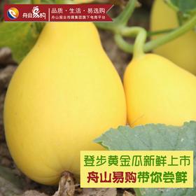 登步黄金瓜 4斤礼盒装 【鲜果易损,仅限本岛配送】