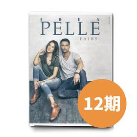 DEAPELLE高端专业鞋款杂志2年(12期)/每月快递直送