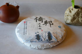 2017年头春倚邦古树纯料普洱生茶