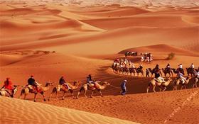 """【7天6晚暑假游学】兰州-敦煌""""丝绸之路""""夏令营,带你走遍西域+黄河+沙漠+戈壁+雅丹!"""
