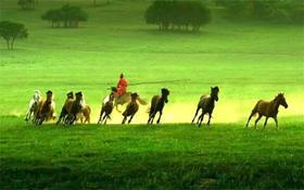 """【7天6晚暑假游学】西安-内蒙古""""一代天骄"""",最精华的西安,别样的草原风光,还有有创意的唐诗比赛等你来挑战!"""