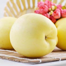 黄金冰糖心苹果|晚45天采摘 自然成熟的味道 5斤9颗精品大果