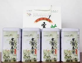 【日照绿】2019年新茶上市 低至160/斤