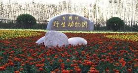 台州湾野生动物园成人票,网友专享优惠