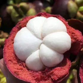 【顺丰包邮】正宗泰国进口山竹4A-5A级山竹油麻竹热带新鲜水果3、5斤包邮现货