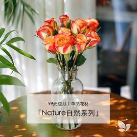 Nature自然系列 | 单品版,99元/4束,每周一束单品,品种随机。